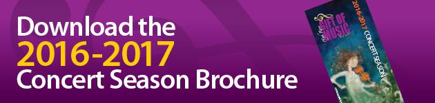 DL16-17broch