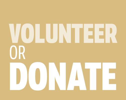 Volunteer or donate